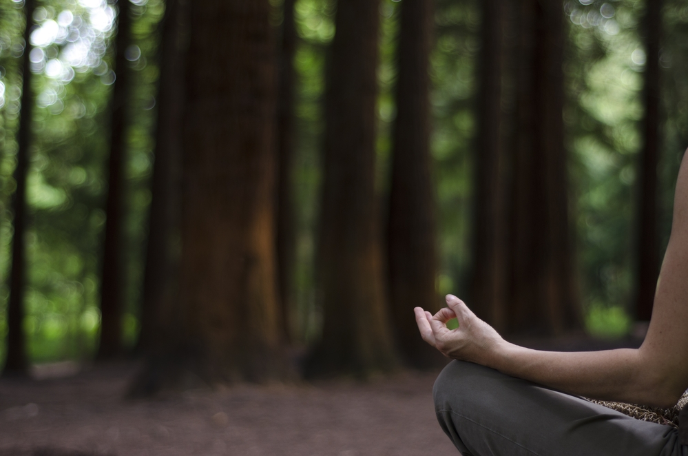 Meditation and Medicine both come from the same root